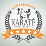 Logo-ambassadeur-karate-thumb